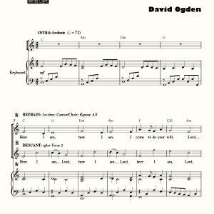 David Ogden – White Light Publishing